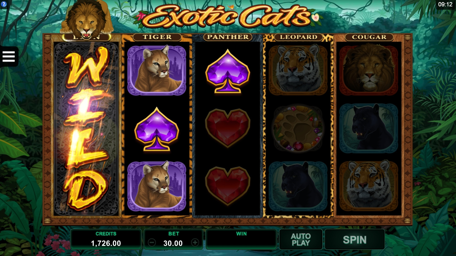 Exotic Cats (Exotic Cats) from category Slots
